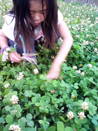 子どもと四つ葉のクローバー
