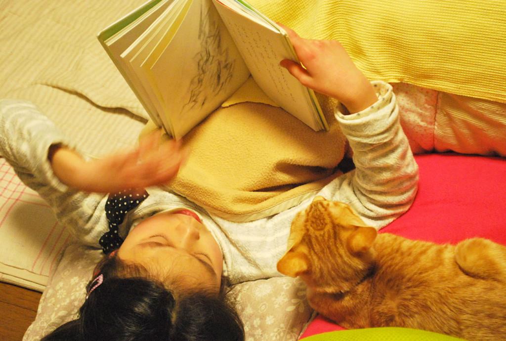 ねこさんと読書