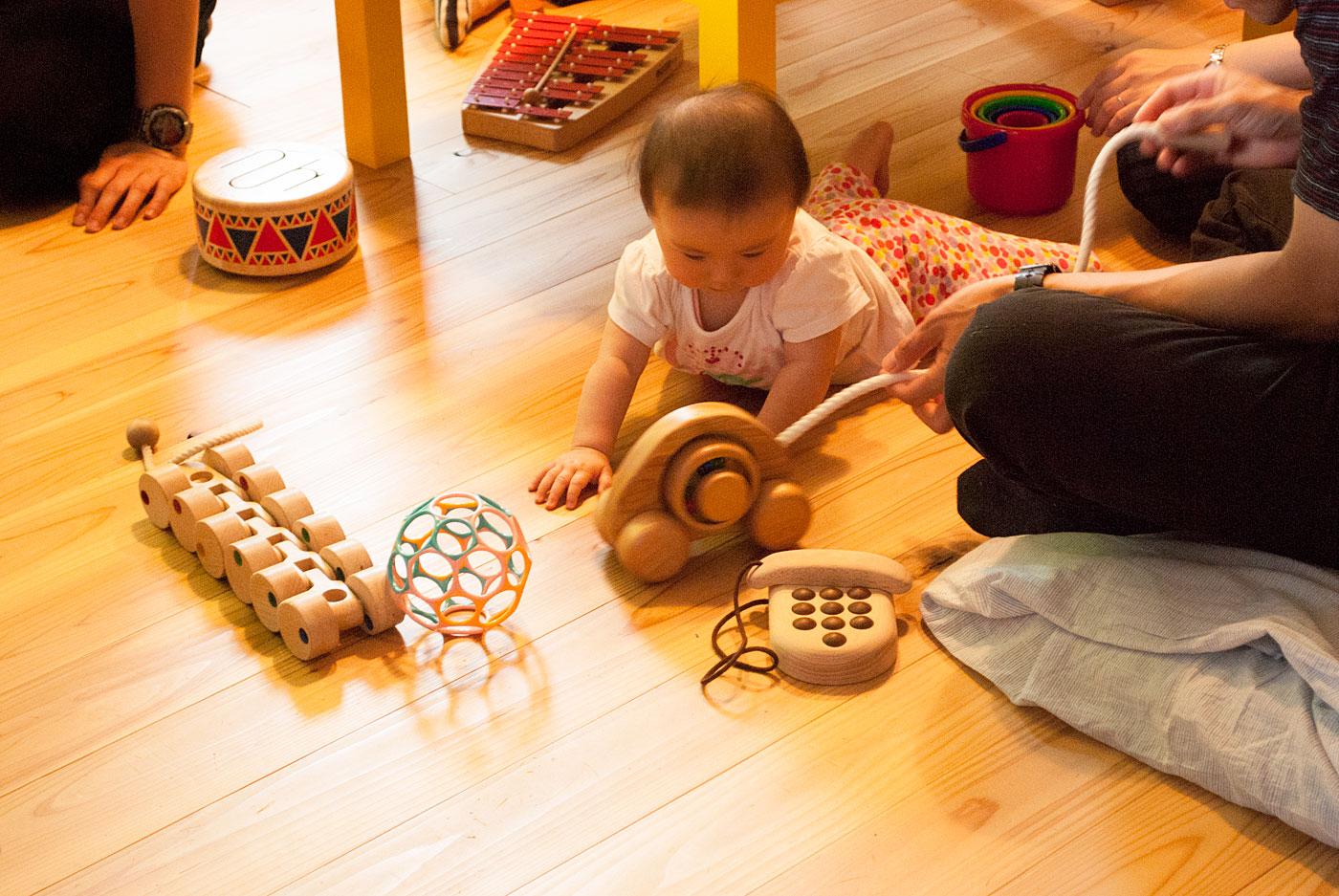 かばんねこ おもちゃで遊ぶ日
