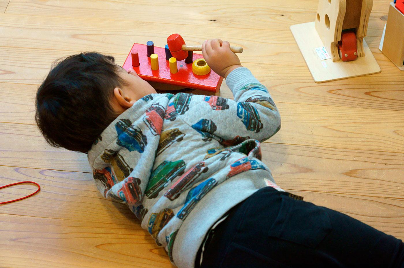 かばんねこでおもちゃで遊ぶ日