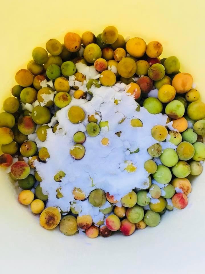 黄熟梅で、梅干つくりましょうー!いいにおいですよー!